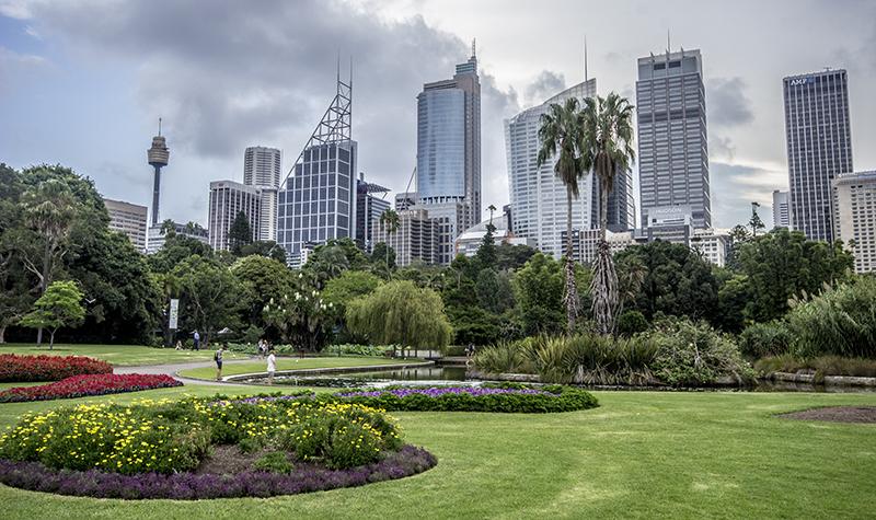 sydney_botanic_garden-7