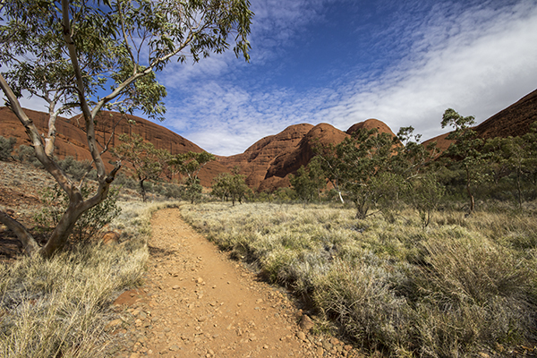 kata_tjuta_july2015-32