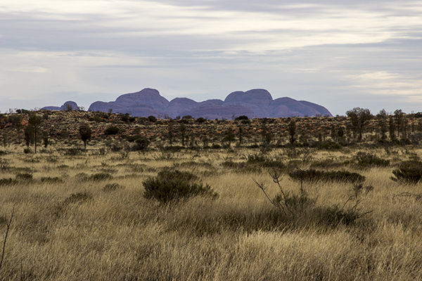 kata_tjuta_july2015-49