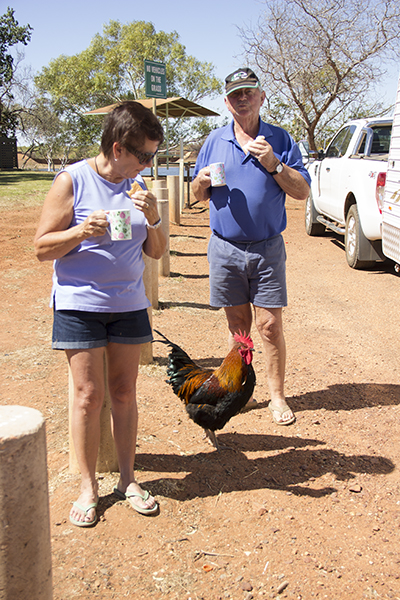tennant_creek_august2015-4