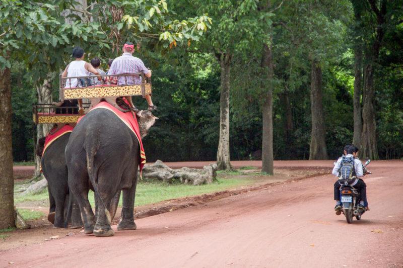 Cambogia, complesso di templi Angkor Wat, sentiero con turisti su elefanti e scooter
